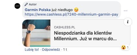 Garmin Pay Millenium